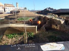 Imatge de la notícia La plantació de l'arbrat completa l'obra de recuperació de l'antic barri de la Cuirassa