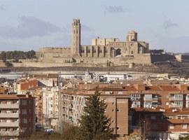 Imatge de la notícia Fèlix Larrosa anima els lleidatans a fer-se seva la candidatura de la Seu Vella a Patrimoni Mundial