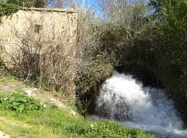 Imatge de la notícia L'Ajuntament de Lleida assumeix la propietat de l'antic Molí de Cervià