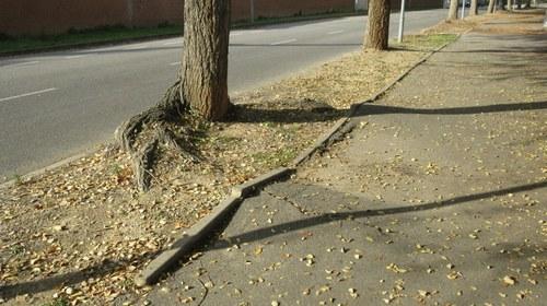 Imatge de la notícia La Paeria renova un tram de vorera del carrer Arquitecte Morera i Gatell
