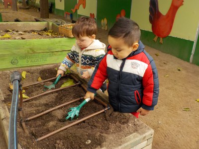 Activitat educativa: Plantem i fem hort d'hivern