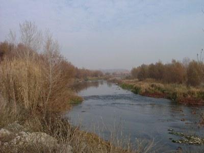 Imatge del event ECODESCOBERTA. El Riu Segre al seu pas per Lleida, del Molí de Picabaix als Aiguamolls de Rufea