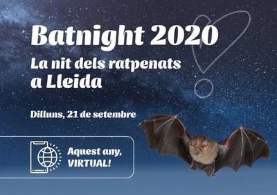 Imatge del event La nit dels ratpenats a Lleida