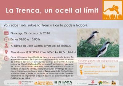 Imatge del event SORTIDA ORNITOLÒGICA. La Trenca, un ocell al límit