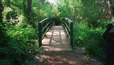 Visita guiada al Parc de la Mitjana