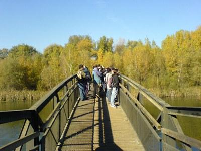 Visita guiada al Parc de la Mitjana - octubre 2019