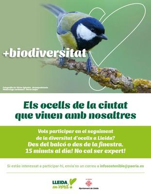 ocells que viuen amb nosaltres