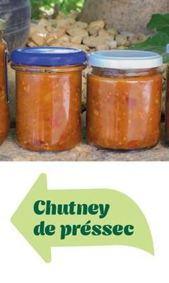 Chutney pressec