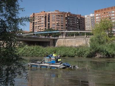 Comencen els treballs de retirada de macròfits al tram urbà del riu Segre
