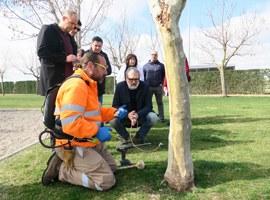 Imatge de la notícia El manteniment de la jardineria a Lleida, més sostenible i eficient