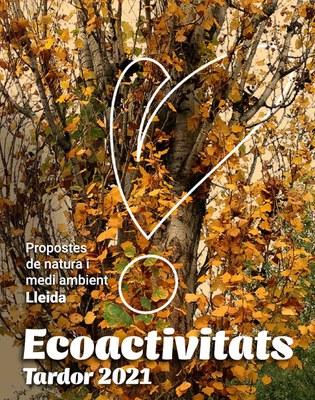 El programa d'ecoactivitats de tardor comença diumenge amb una proposta per observar artròpodes