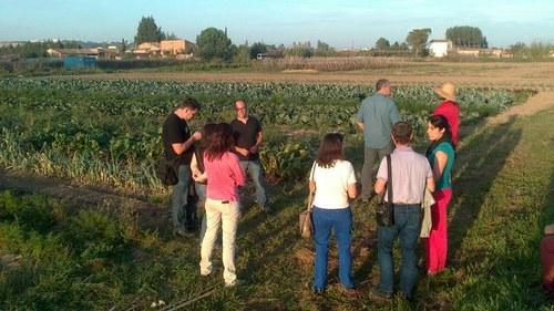 Imatge de la notícia Els agricultors de l'Horta atansen a la ciutadania la seva activitat