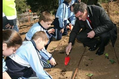 Enjardinament del nou Parc de la Seu Vella com a activitat pedagògica