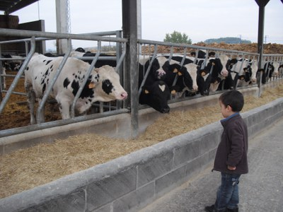 Èxit de participació a les jornades de portes obertes a l'Horta de Lleida