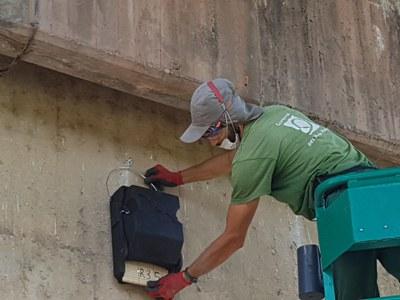 Instal·lació de caixes refugi per a ratpenats al parc del riu