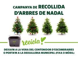 L'Ajuntament de Lleida fomenta el reciclatge amb la recollida d'arbres de Nadal
