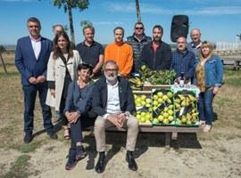 La marca Horta de Lleida es posa en marxa amb l'acreditació de les primeres 22 empreses productores