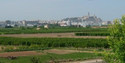 La Paeria denuncia abocaments il·legals en l'Horta de Lleida