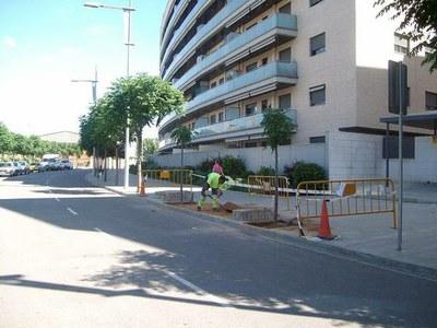 La Paeria inicia la plantació de 700 nous arbres a la ciutat