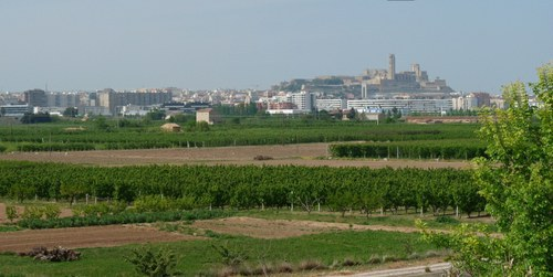 Imatge de la notícia La Paeria treballa per minimitzar els abocament il·legals de residus a l'Horta