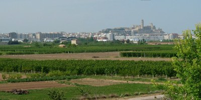 La Paeria treballa per minimitzar els abocament il·legals de residus a l'Horta