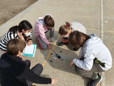 L'alumnat de Lleida investiga l'emergència climàtica amb propostes per reduir el consum d'energia a les escoles dins l'Agenda 21 Escolar