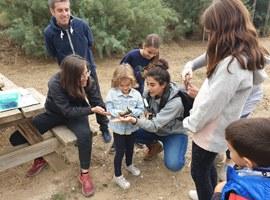 Lleida celebra aquest cap de setmana el Dia Mundial dels Ocells amb diverses activitats ornitològiques