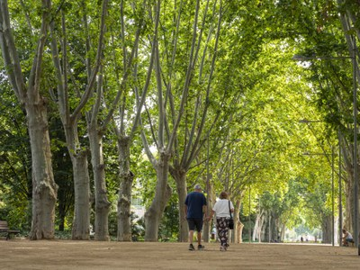 Lleida, entre les ciutats europees amb menys mortalitat atribuïble a la manca d'espais verds