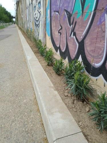 Imatge de la notícia Millora paisatgística i ambiental del tram urbà del marge dret del riu Segre