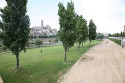 Imatge de la notícia Nova ordenança per a la protecció i gestió dels espais verds de Lleida