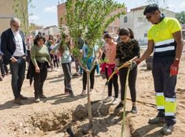 Plantació popular dels arbres del nou bosc urbà de Magraners
