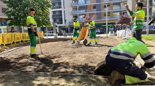 Imatge de la notícia Renovació de la gespa a la plaça de l'Escorxador