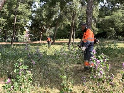 Seguiment de la Paeria a l'empresa de jardineria pel manteniment de les zones verdes