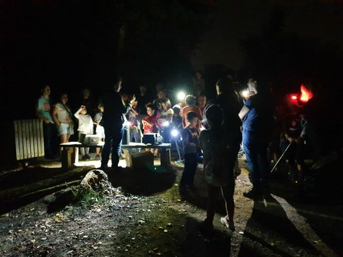 Imatge de la notícia Torna la nit dels Ratpenats a la Mitjana