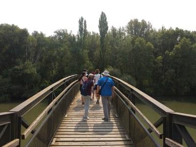 Visita guiada a La Mitjana per conèixer les plantes del bosc de ribera
