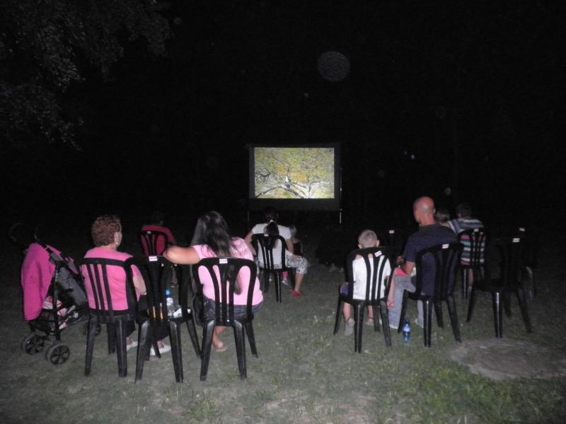 Cinemaambientalbr.JPG