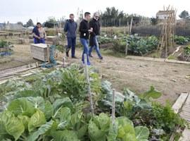 Els agricultors de l'Horta donen a conèixer la seva activitat i productes amb visites comentades