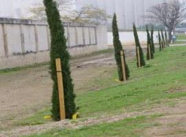 Imatge de la notícia L'Ajuntament de Lleida adequa el talús de la carretera N-240 a l'altura del cementiri