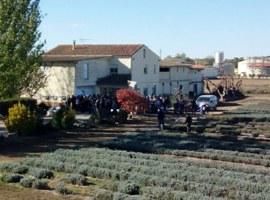 Imatge de la notícia La ciutadania s'interessa pels nous cultius i produccions de l'Horta de Lleida