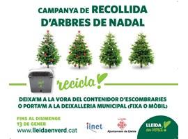 Imatge de la notícia La Paeria fomenta el reciclatge amb la recollida d'arbres de Nadal