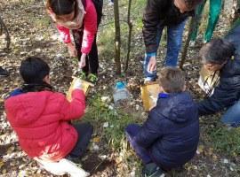 Neteja i manteniment de caixes niu al parc de la Mitjana