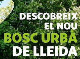 Plantada d'arbres al nou bosc urbà de Lleida, a Balàfia