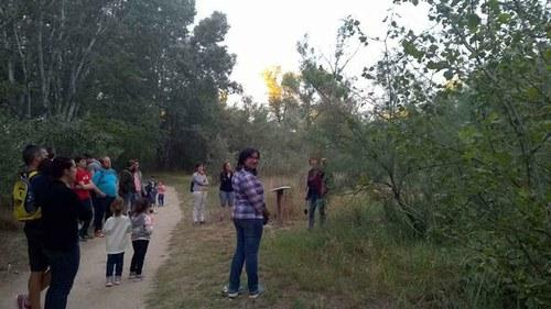 Imatge de la notícia Una vintena de persones descobreixen la Mitjana de Nit