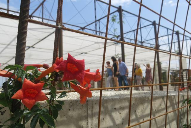 Una vintena de persones visiten el Museu del Clima i la Ciència de Lleida i el llegat Oró en la primera visita guiada